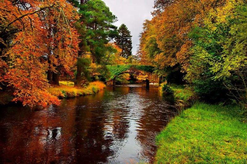 Trail Run Ireland