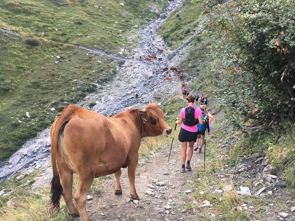 Fra turen rundt om Mt. Blanc 2019